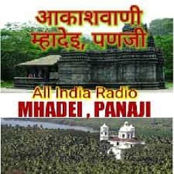 Music Auditions - All India Radio   Prasar Bharati